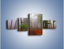 Obraz na płótnie – Budzący się lasek – czteroczęściowy KN1285AW5