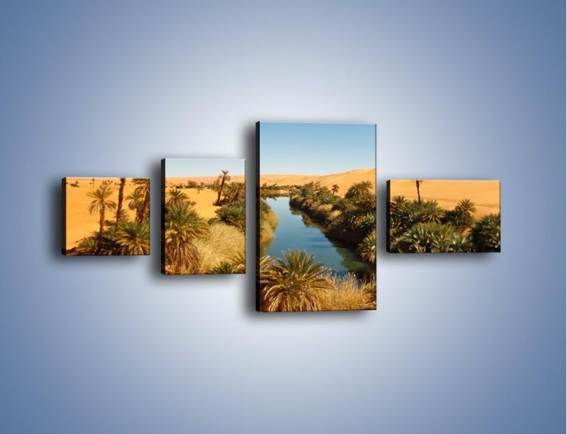 Obraz na płótnie – Woda woda na pustyni – czteroczęściowy KN1294AW5