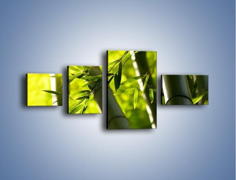 Obraz na płótnie – Twarde łodygi bambusa – czteroczęściowy KN1314AW5