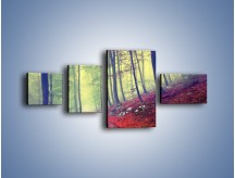 Obraz na płótnie – Bardzo wąską ścieżką leśną – czteroczęściowy KN1335AW5