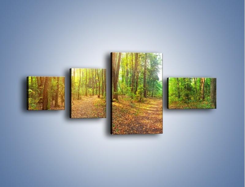 Obraz na płótnie – Przejrzysty piękny las – czteroczęściowy KN1344AW5