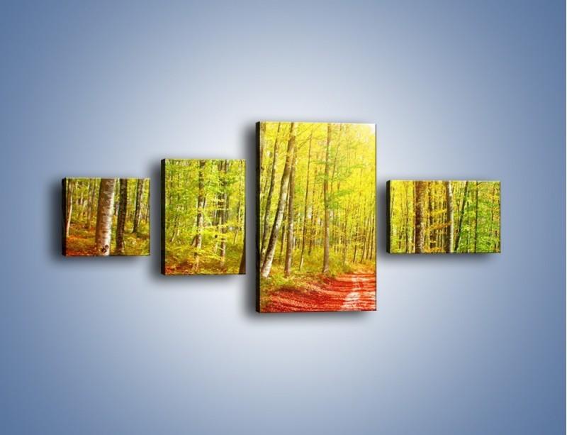 Obraz na płótnie – Brzózki liście i las – czteroczęściowy KN1345AW5