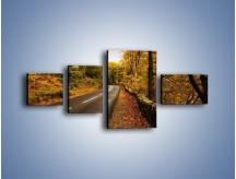 Obraz na płótnie – Asfaltową droga przez las – czteroczęściowy KN169W5
