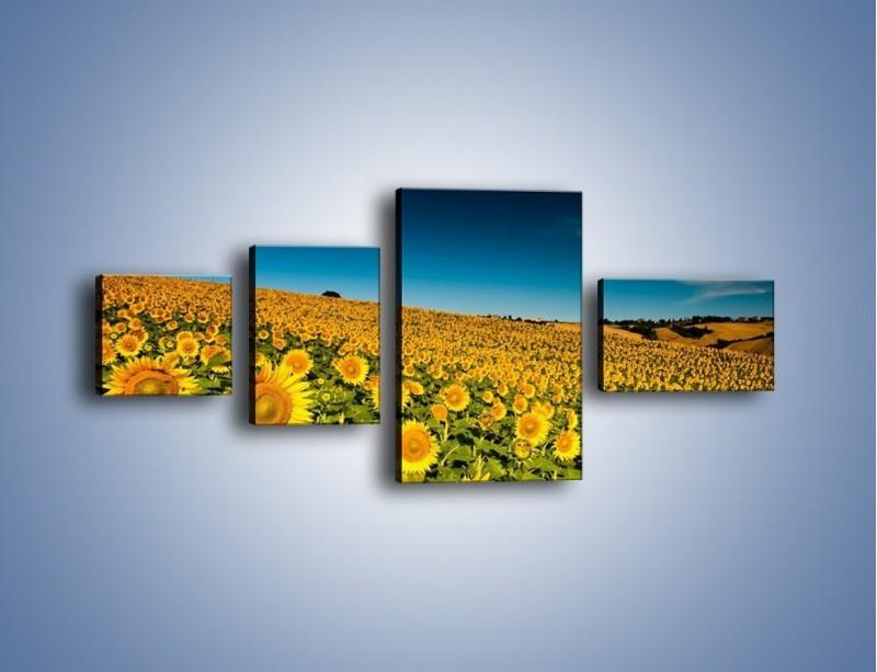 Obraz na płótnie – Słonecznikowe uśmiechnięte główki – czteroczęściowy KN205W5