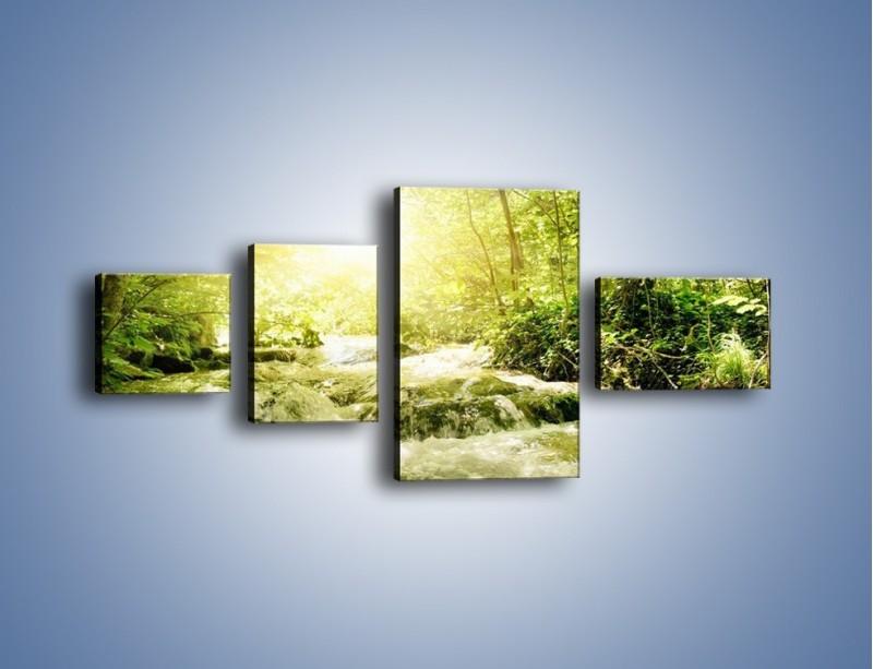 Obraz na płótnie – Wzburzony potok leśny – czteroczęściowy KN508W5