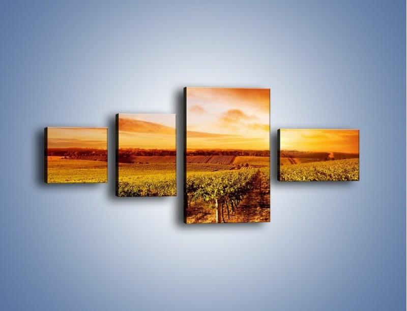 Obraz na płótnie – Ziemia i uprawy – czteroczęściowy KN673W5