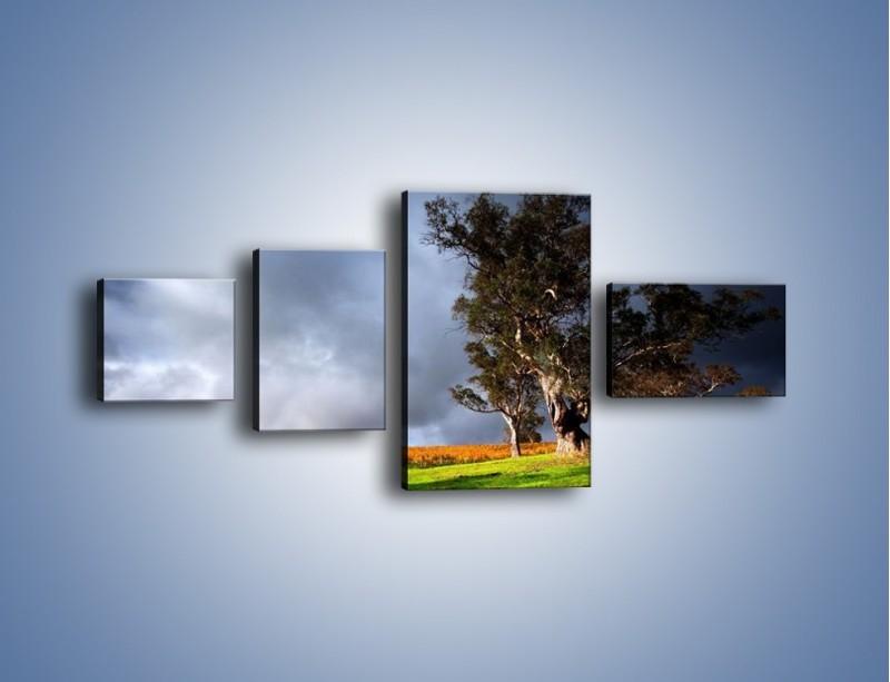 Obraz na płótnie – Burzowe chmury nad polaną – czteroczęściowy KN748W5