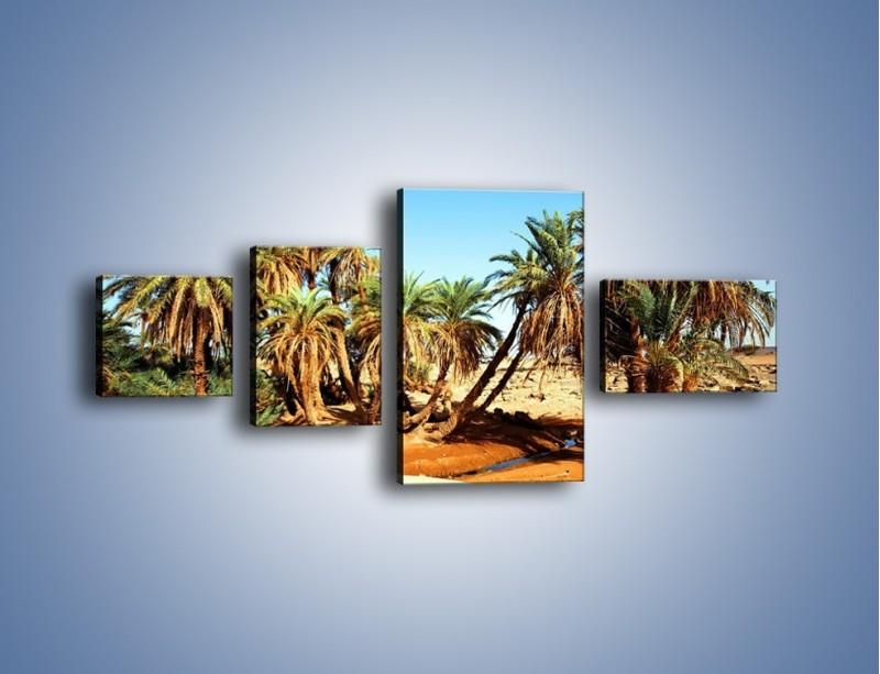 Obraz na płótnie – Palmowa rodzina w komplecie – czteroczęściowy KN809W5