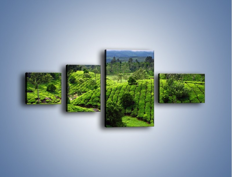 Obraz na płótnie – Rozległa zielona kraina – czteroczęściowy KN872W5