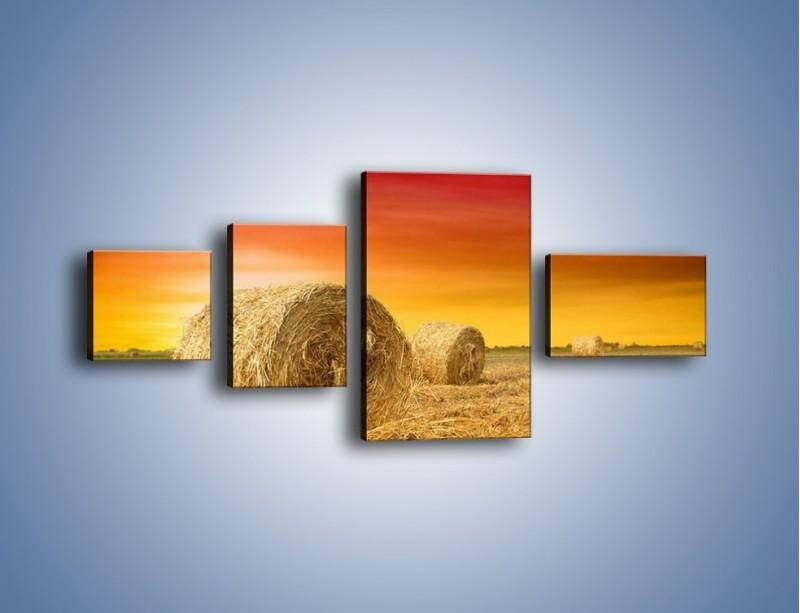 Obraz na płótnie – Koła z siana – czteroczęściowy KN958W5