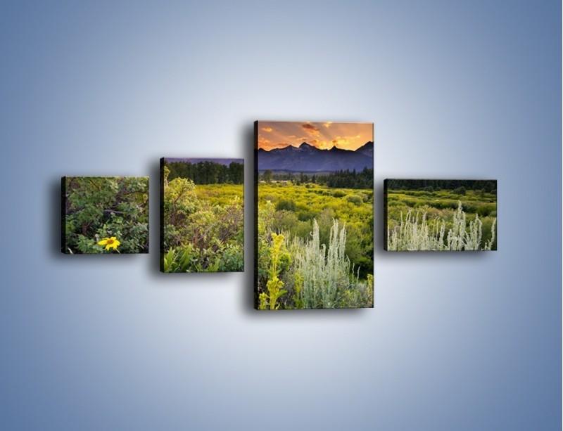 Obraz na płótnie – Wieczorny spokój na polanie – czteroczęściowy KN987W5