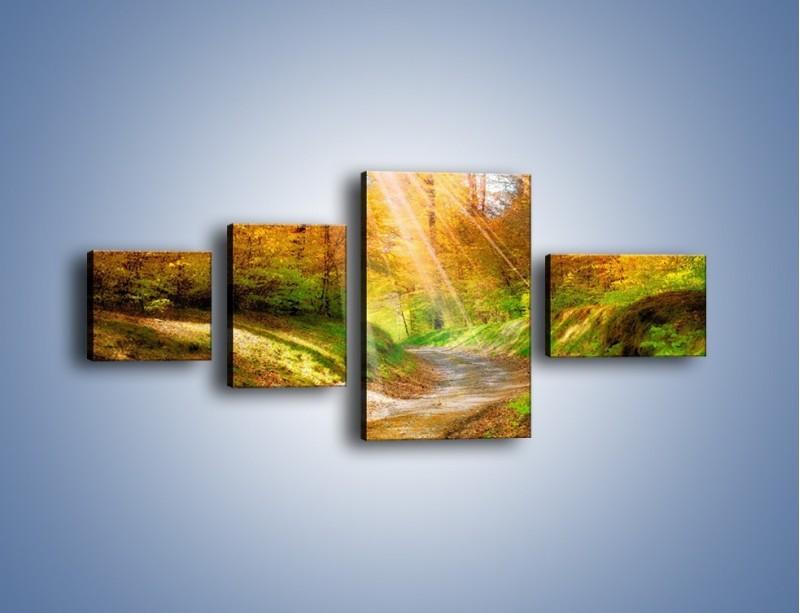 Obraz na płótnie – Promienną i słoneczną ścieżką przez las – czteroczęściowy KN989W5