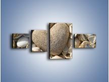 Obraz na płótnie – Miłość do muszli i morza – czteroczęściowy O132W5