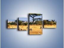 Obraz na płótnie – Antylopy w słonecznej afryce – czteroczęściowy Z003W5