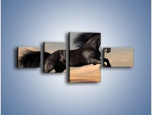 Obraz na płótnie – Czarny koń w galopie – czteroczęściowy Z008W5