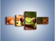 Obraz na płótnie – Bystre oczka małej żabki – czteroczęściowy Z023W5