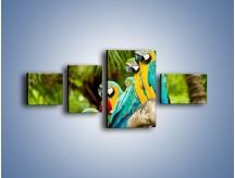 Obraz na płótnie – Kolorowe papugi w szeregu – czteroczęściowy Z029W5