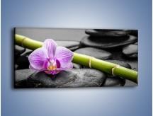 Obraz na płótnie – Bambus czy storczyk – jednoczęściowy panoramiczny K686