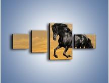 Obraz na płótnie – Bieg z koniem po polanie – czteroczęściowy Z057W5