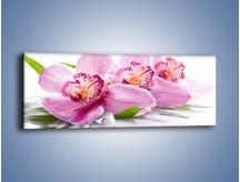 Obraz na płótnie – Biały kwiatowy stół – jednoczęściowy panoramiczny K688