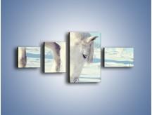 Obraz na płótnie – Arab w śnieżnym puchu – czteroczęściowy Z144W5