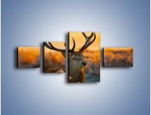 Obraz na płótnie – Ciężkie poroże jelenia – czteroczęściowy Z165W5