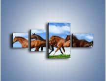Obraz na płótnie – Galopujące stado brązowych koni – czteroczęściowy Z172W5