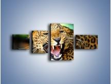 Obraz na płótnie – Jaguar z pazurem – czteroczęściowy Z184W5