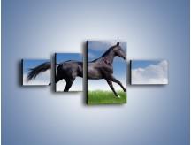 Obraz na płótnie – Dziki koń w biegu – czteroczęściowy Z194W5