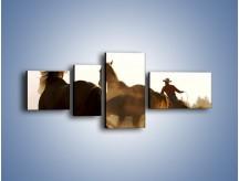 Obraz na płótnie – Cowboy wśród koni – czteroczęściowy Z206W5