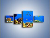 Obraz na płótnie – Kolory tęczy pod wodą – czteroczęściowy Z220W5