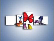 Obraz na płótnie – Kolorowo wśród motyli – czteroczęściowy Z236W5