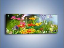 Obraz na płótnie – Bańkowy świat kwiatów – jednoczęściowy panoramiczny K691