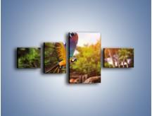 Obraz na płótnie – Kolorowa papuga w locie – czteroczęściowy Z280W5