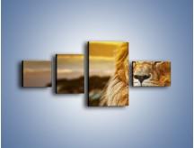 Obraz na płótnie – Dojrzały wiek lwa – czteroczęściowy Z303W5