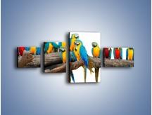 Obraz na płótnie – Kolorowe stado papug – czteroczęściowy Z326W5