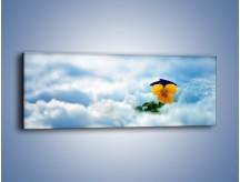 Obraz na płótnie – Bratek na śnieżnym niebie – jednoczęściowy panoramiczny K744