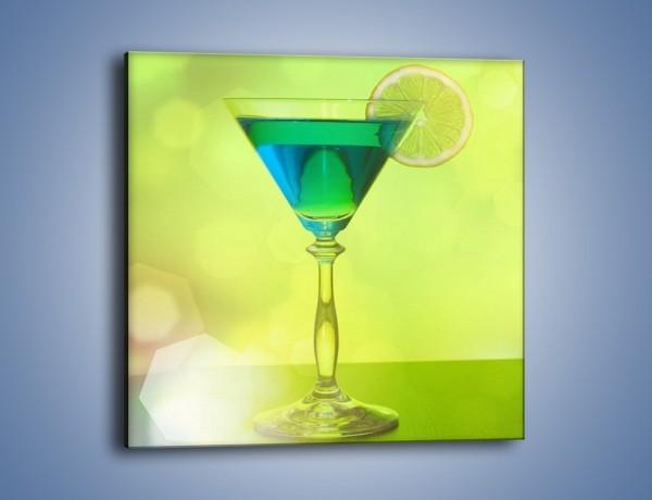 Obraz na płótnie – Drink zatopiony w oceanie – jednoczęściowy kwadratowy JN559