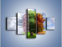Obraz na płótnie – Cztery pory roku – pięcioczęściowy GR333W1
