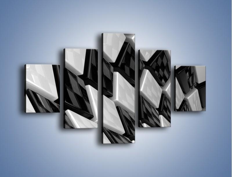 Obraz na płótnie – Czarne czy białe – pięcioczęściowy GR425W1