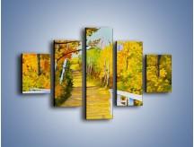 Obraz na płótnie – Alejką w słoneczna jesień – pięcioczęściowy GR540W1