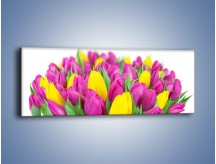 Obraz na płótnie – Bukiet fioletowo-żółtych tulipanów – jednoczęściowy panoramiczny K778
