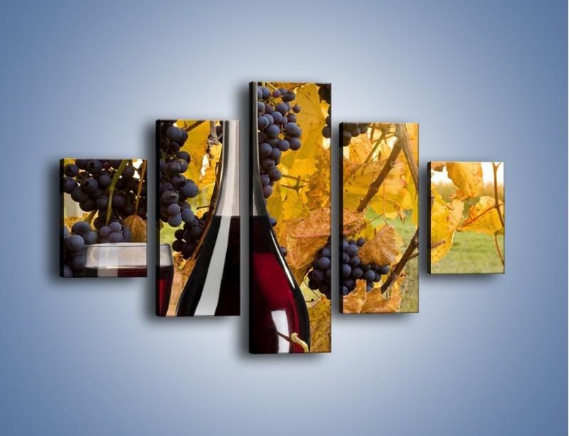 Obraz na płótnie – Wino wśród winogron – pięcioczęściowy JN007W1