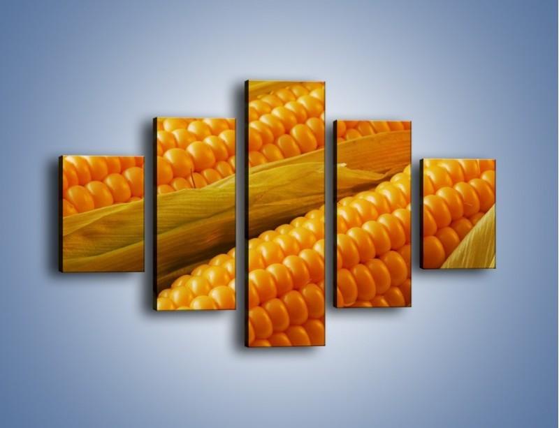 Obraz na płótnie – Kolby dojrzałych kukurydz – pięcioczęściowy JN046W1
