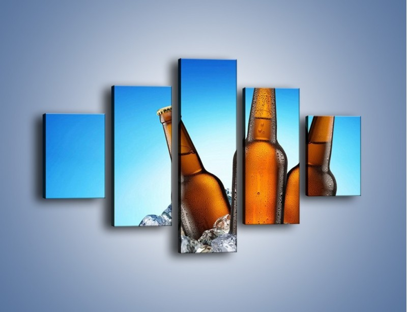 Obraz na płótnie – Szron na butelkach piwa – pięcioczęściowy JN075W1