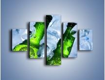 Obraz na płótnie – Czas na zimne piwko – pięcioczęściowy JN148W1