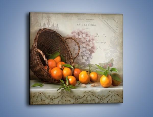 Obraz na płótnie – Pomarańczowe opowieści – jednoczęściowy kwadratowy JN570