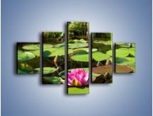 Obraz na płótnie – Ciemno-różowy nenufar na wodzie – pięcioczęściowy K014W1