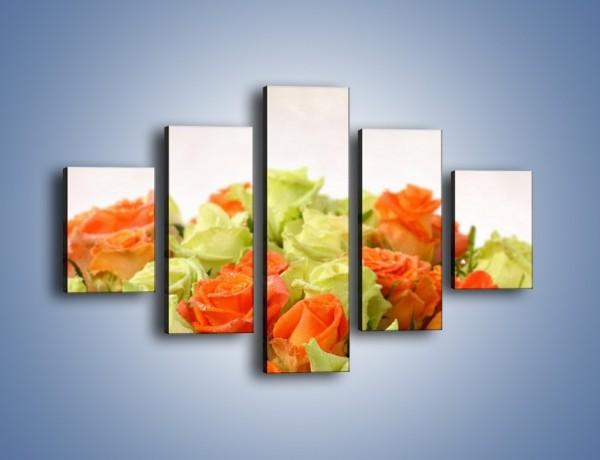 Obraz na płótnie – Dwa kolory w róży – pięcioczęściowy K132W1