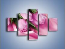 Obraz na płótnie – Atłas wśród tulipanów – pięcioczęściowy K152W1